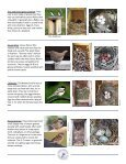 Monitoring Bluebird Nest Boxes - North American Bluebird Society - Page 3