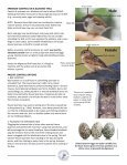 House Sparrow Control - North American Bluebird Society - Page 2