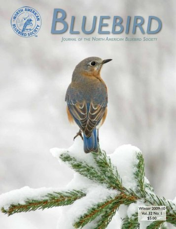 Winter 2009-10 Vol. 32 No. 1 $5.00 - North American Bluebird Society
