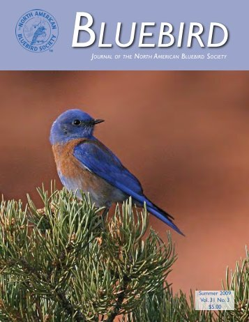 Summer 2009 Vol. 31 No. 3 $5.00 - North American Bluebird Society