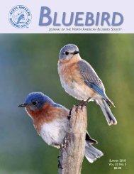 Vol. 32 No. 3 $5.00 - North American Bluebird Society