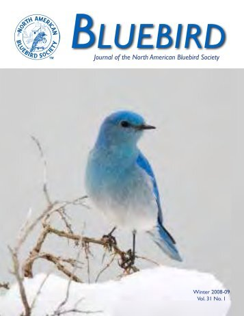 Vol. 31, No. 1 - North American Bluebird Society