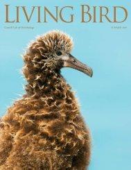 LB Summer 2010.pdf - Cornell Lab of Ornithology - Cornell University