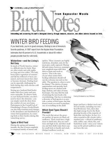 Home Study Course In Bird Biology