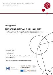 Delrapport 1: THE SCANDINAVIAN 8 MILLION CITY