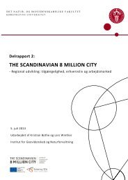Delrapport 2: THE SCANDINAVIAN 8 MILLION CITY