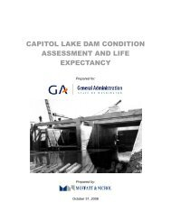 capitol lake dam condition assessment and life expectancy