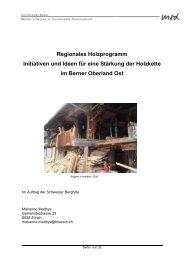 Kurzfassung Holzkette Berner Oberland Matthys