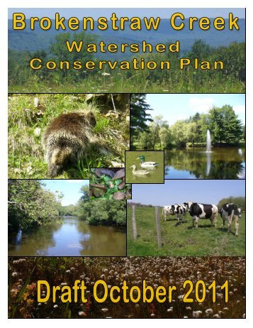 Brokenstraw Creek Draft Plan - Western Pennsylvania Conservancy