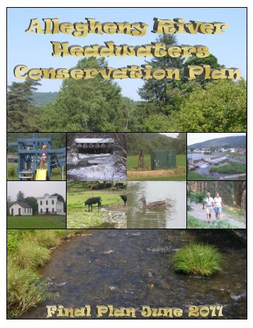 Allegheny River Headwaters Watershed Conservation Plan