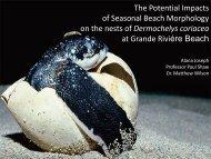 The Potential Impacts of Seasonal Beach Morphology ... - C-Change
