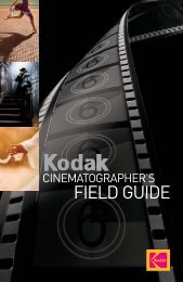 Cinematographer's Field Guide - bioskop