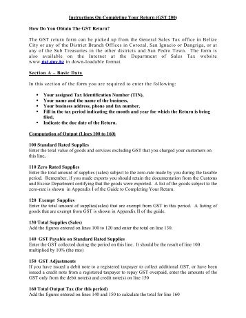 Instructions On Completing Your Return - The Belize Department of ...