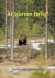 Är björnen farlig svenska 70 - Wilderness Road