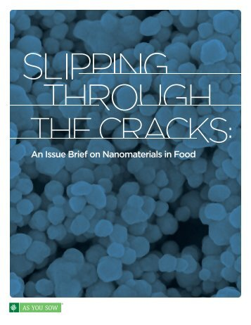 An Issue Brief on Nanomaterials in Food - Corporate Crime Reporter