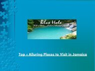 Top 4 Alluring Places to Visit in Jamaica