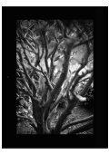 Monografico Street Photography AFC.pdf - Page 6