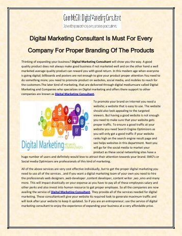 Digital Marketing Consultant Is Must For Every Company For Proper Branding Of The Products