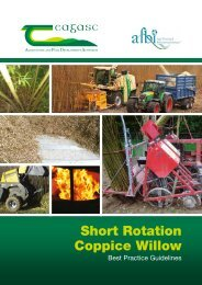 TeagascCoppiceWillowGuidelines260315