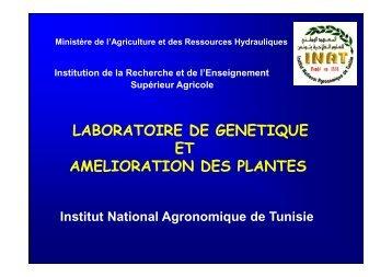 laboratoire de genetique et amelioration des plantes - Iresa