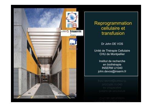 Reprogrammation cellulaire et transfusion
