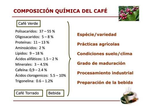Propiedades funcionales y biodisponibilidad de compuestos ...