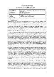 TÉRMINOS DE REFERENCIA - Fonam