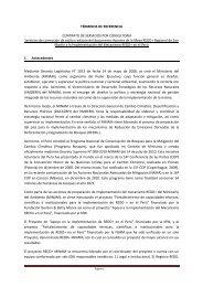 TÉRMINOS DE REFERENCIA CONTRATO DE SERVICIOS ... - Fonam