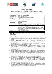 TÉRMINOS DE REFERENCIA Servicio de Consultoría para ... - Fonam
