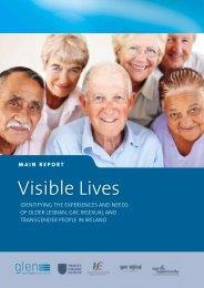 Visible_Lives_Main_Report_Final