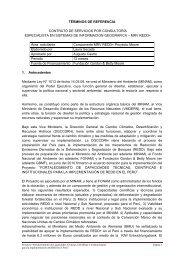 términos de referencia contrato de servicios por consultoría ... - Fonam