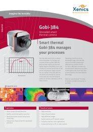 Gobi-384 - XenICs