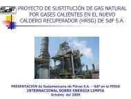 PROYECTO DE SUSTITUCIÓN DE GAS NATURAL POR ... - Fonam