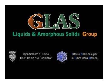 Liquids & Amorphous Solids Group - La Sapienza