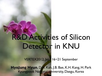 R/D Activities of Silicon Detector in KNU - Vertex 2012