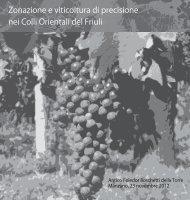 Zonazione e viticoltura di precisione nei Colli ... - InfoWine.Com