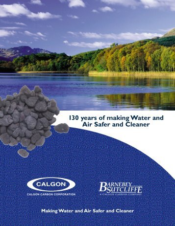 Timeline Brochure.pdf - Clean My Water