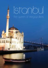 to access our well-prepared Istanbul Guide