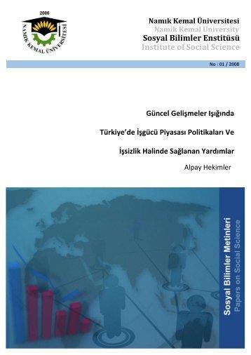 Güncel Gelişmeler Işığında Türkiye'de İşgücü Piyasası ... - E-Universite