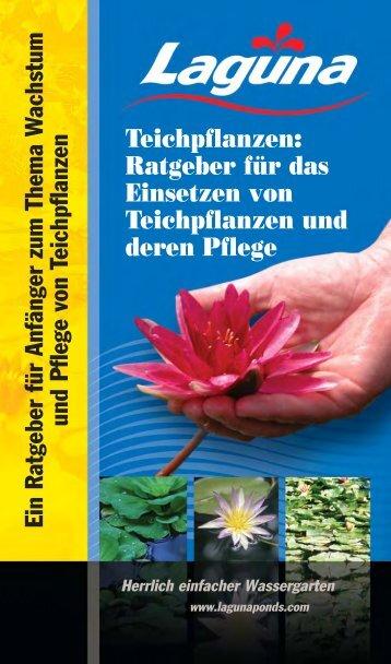 Teichpflanzen: Ratgeber für das Einsetzen von ... - Hagen