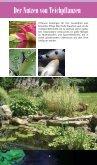 Teichpflanzen: Ratgeber für das Einsetzen von ... - Hagen - Seite 4