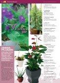 pflanzen - Blumenwelt Hödnerhof - Seite 3