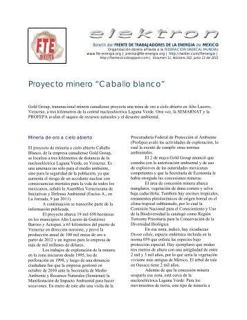 """Proyecto minero """"Caballo blanco"""" - Frente de Trabajadores de la ..."""