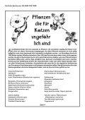 Pflanzen, die Katzen gefährlich werden können - Geliebte Katze - Seite 4