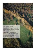 November - Pécsi Egyházmegye - Page 2