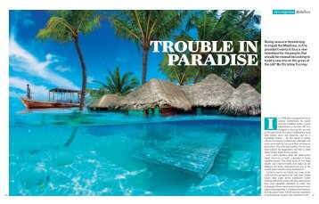 TROUBLE IN PARADISE - Christine Toomey