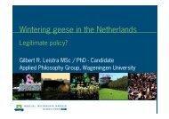 Wintering geese in the Netherlands - Wageningen UR