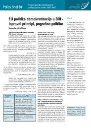 EU politika demokratizacije u BiH - Ispravni principi, pogrešne politike