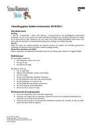 Handlingsplan fadderverksamhet 2010/2011