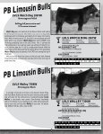 Lim-Flex Bulls - Lonely Valley Seedstock - Page 5
